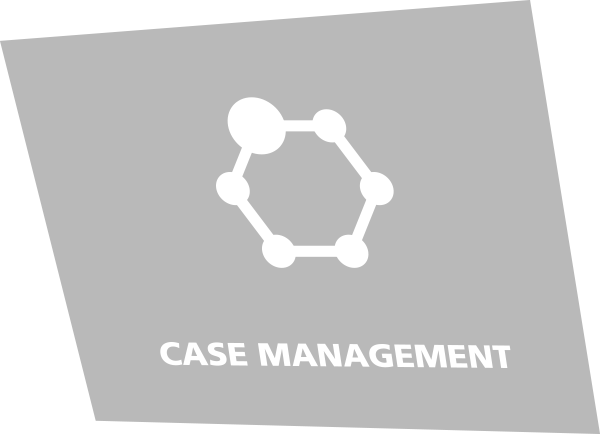 ARTIST SAFETY - CASE MANAGEMENT